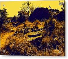 Cactus Acrylic Print by Mickey Harkins