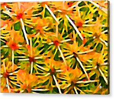 Cactus Pattern 2 Yellow Acrylic Print by Amy Vangsgard