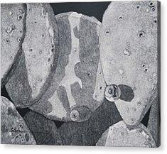 Cactus Tuna Acrylic Print by Diane Cutter