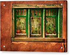 Cactus Window Acrylic Print by Keith Berr