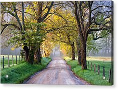 Cades Cove Great Smoky Mountains National Park - Sparks Lane Acrylic Print by Dave Allen