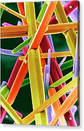 Caffeine Crystals Acrylic Print by Dr Jeremy Burgess