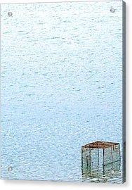 Caged Expanse Acrylic Print by Kaleidoscopik Photography