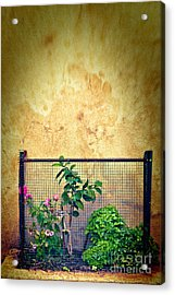 Caged Acrylic Print