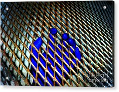 Caged Acrylic Print by The Stone Age