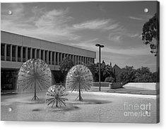 Cal State University Long Beach Student Union Acrylic Print by University Icons