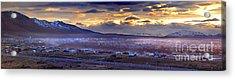 Calafate Panoramic Acrylic Print