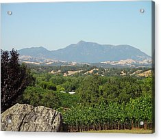 Acrylic Print featuring the photograph Cali View by Shawn Marlow