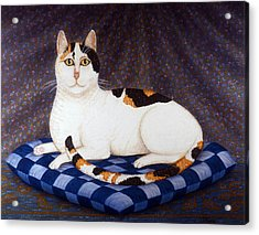 Calico Cat Portrait Acrylic Print by Linda Mears
