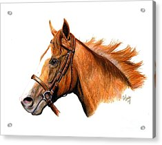 California Chrome Acrylic Print by Pat DeLong