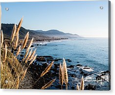 California Coast - 521 Acrylic Print by Stephen Parker