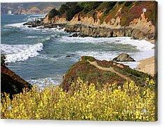 California Coast Overlook Acrylic Print by Carol Groenen