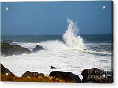 Acrylic Print featuring the photograph California Coast4 by Theresa Ramos-DuVon