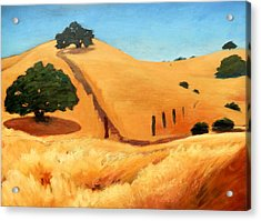 California Dry Grass Acrylic Print