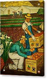 California Farmers Acrylic Print