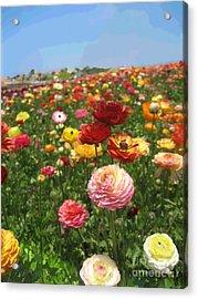 California Flowers Acrylic Print by Robert Wek