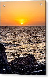 California Gold Acrylic Print
