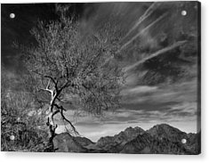 Acrylic Print featuring the photograph California Landscape 1 by Jim Vance