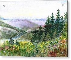 Redwood Creek National Park Acrylic Print by Irina Sztukowski
