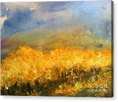 California Orchards Acrylic Print by Sherry Harradence
