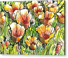 California Poppies Acrylic Print by Terry Banderas