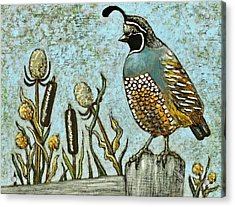 Acrylic Print featuring the painting California Quail by VLee Watson