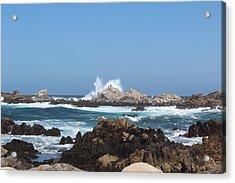 California See Harbor  Acrylic Print by Elena Wells