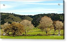 California Winter Landscape Acrylic Print by Susan Wiedmann