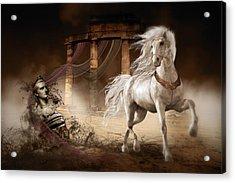 Caligula's Horse Acrylic Print by Shanina Conway