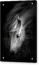 Call Me The Wind Acrylic Print