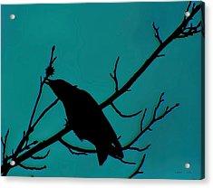 Call Of The Crow On Aqua 2 Acrylic Print