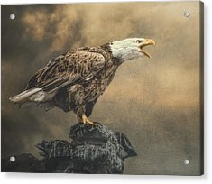 Acrylic Print featuring the photograph Call Of The Wild by Brian Tarr