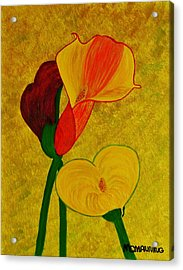 Calla Lilly Acrylic Print by Celeste Manning