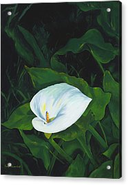 Calla Lily In The Garden Of Diego And Frida Acrylic Print by Judy Swerlick