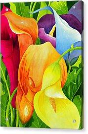 Calla Lily Rainbow Acrylic Print