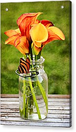 Calla's And The Butterfly Acrylic Print by Darren Fisher