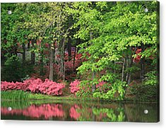 Callaway Gardens 1 Acrylic Print by Mountains to the Sea Photo