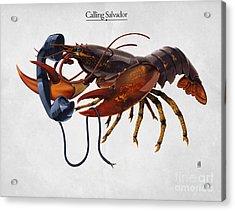Calling Salvador Acrylic Print