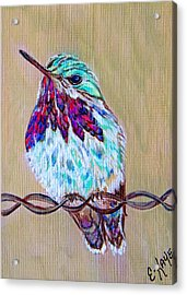 Acrylic Print featuring the painting Calliope On The Fence by Ella Kaye Dickey