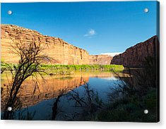 Calm Colorado River Acrylic Print by Michael J Bauer