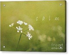 Calm Acrylic Print by Elena Nosyreva