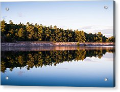 Calm Acrylic Print by Lee Costa
