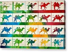 Camel Locomotion Acrylic Print