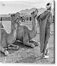 Acrylic Print featuring the photograph Camel Market, Morocco, 1972 - Travel Photography By David Perry Lawrence by David Perry Lawrence