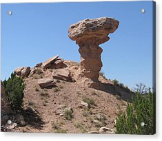 Acrylic Print featuring the photograph Camel Rock - Natural Rock Formation by Dora Sofia Caputo Photographic Art and Design