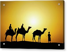Camels And Camel Driver Silhouetted Acrylic Print by Adam Jones