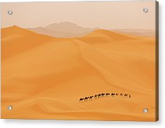 Camels Caravan In Sahara Acrylic Print