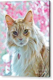 Cameo And Crabapples Acrylic Print