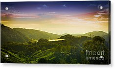 Cameron Highlands Acrylic Print by Receb Parsel