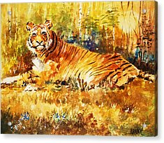 Acrylic Print featuring the painting Camouflage by Al Brown